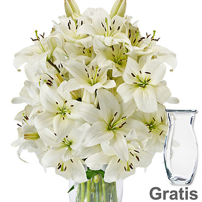 10 weiße Lilien