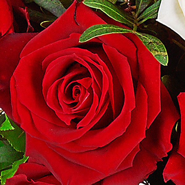 """Rosenstrauß mit Vase """"Nur für Dich"""""""