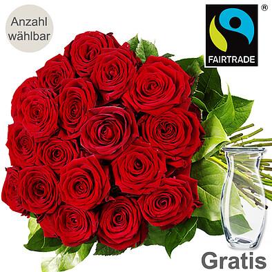 Rote FAIRTRADE Premiumrosen im Bund mit Vase