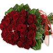 Roten Rosen im Bund