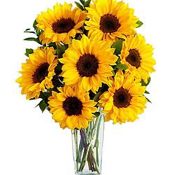 Blumenstrauß Sonnentraum