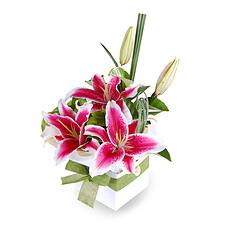 Blumensarrangement Karat