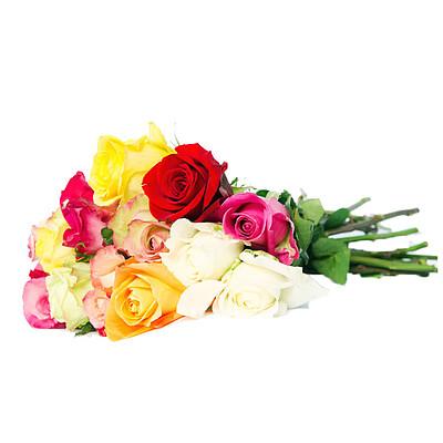 Bunte Rosen im Bund