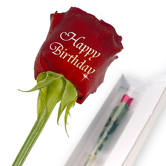 "Edelrose mit Golddruck: ""Happy Birthday"""