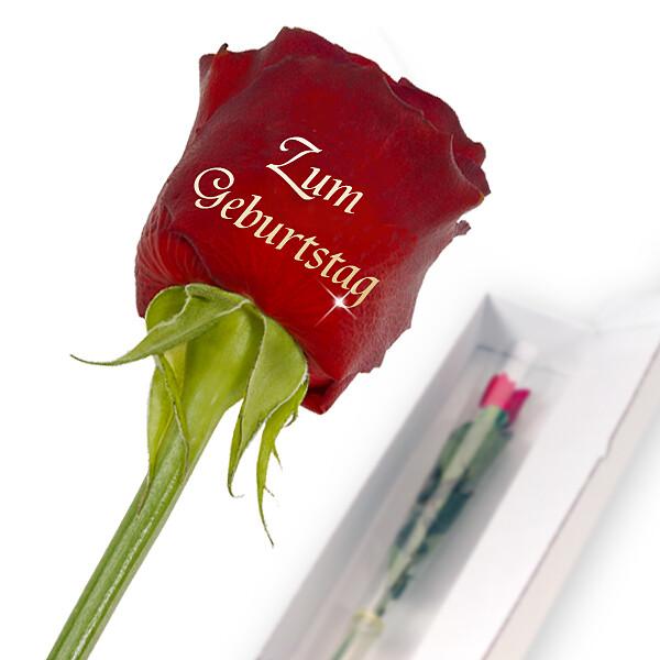"""Edelrose mit Golddruck: """"Zum Geburtstag"""""""