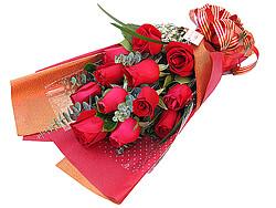Rosen im Bund
