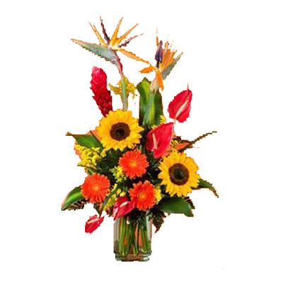 Blumenstrauß Tropicana
