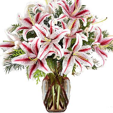Blumenstrauß Zuckerstange
