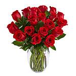 18 langstielige Rosen