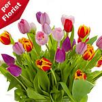 Blumenstrauß Tulip