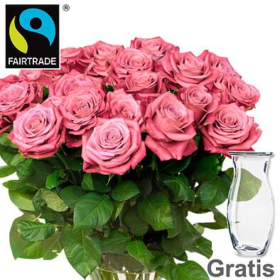 20 rosa FAIRTRADE Rosen im Bund mit Vase