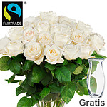 Bunch of  20 white FAIRTRADE roses