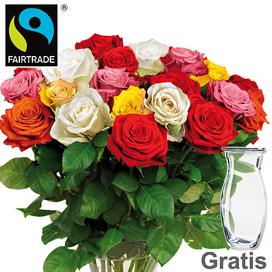Mixed FAIRTRADE roses in a bunch with vase