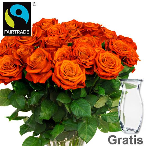 Orange FAIRTRADE Rosen im Bund