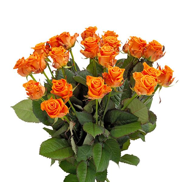 Oranger Rosenstrauß