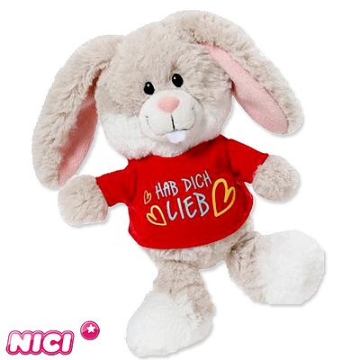 Bunny with t-shirt