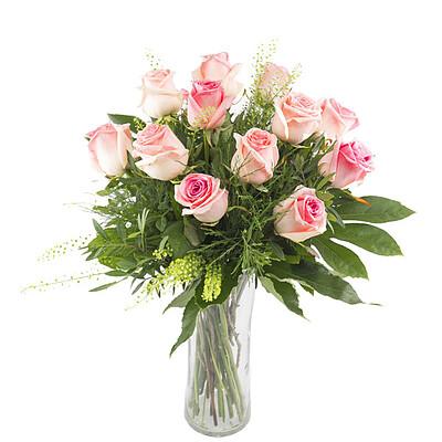 12 pinke Rosen