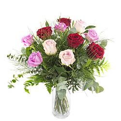 12 multicoloured roses