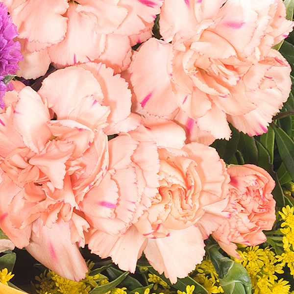 Blumenstrauß Farbenspiel mit Vase & Ferrero Raffaello & GLÜCK-Marmelade