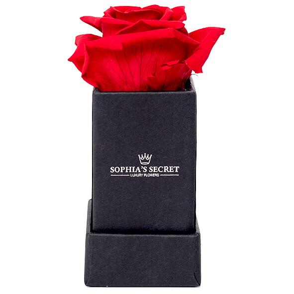 1 rote haltbare Rose in schwarzer Box