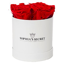 5 red roses in a white round box
