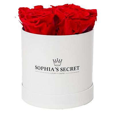 5 rote haltbare Rosen in weißer Rundbox