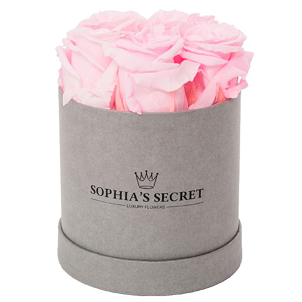 5 pink roses in a grey round box