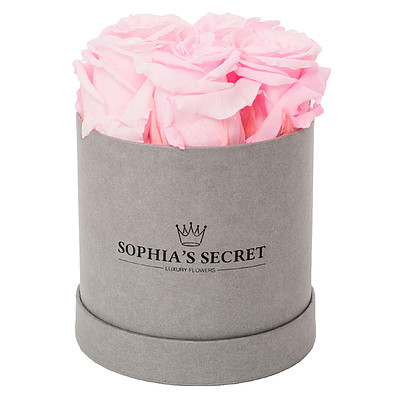 5 rosa haltbare Rosen in grauer Rundbox