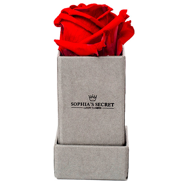 1 red rose in a grey box