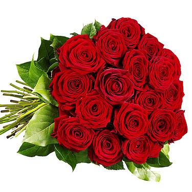 Red Premium roses