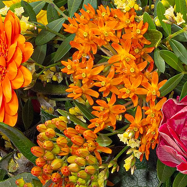 Blumenstrauß Frühlingszauber mit Vase & Ferrero Raffaello