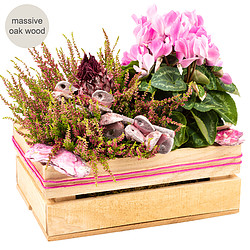 Arrangement Rosa Schönheit in a wooden box