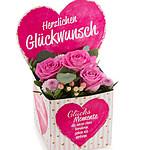 """Blumenbox """"Herzlichen Glückwunsch"""""""