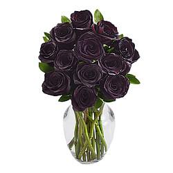 12 langstielige schwarze Rosen