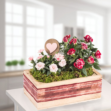 Hearty greetings in a wooden box