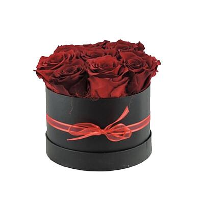 Rosenbox Rot