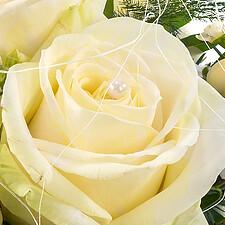 Rose mit Perle
