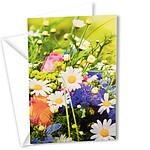 Motivkarte Neutral Blumenwiese