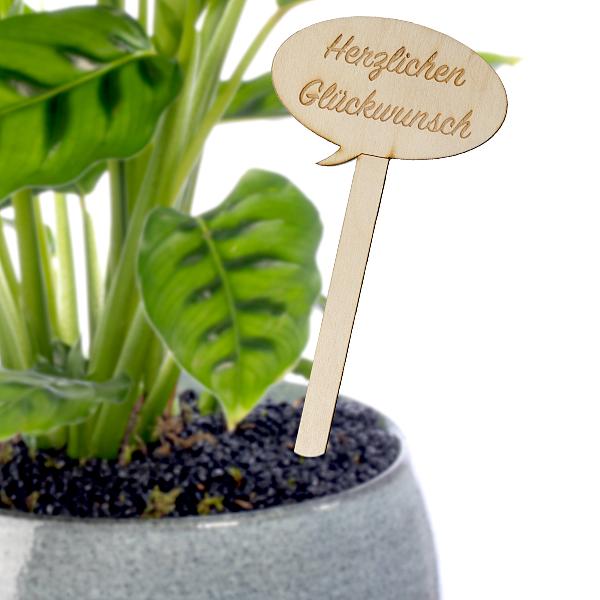 """Pflanzenstecker """"Herzlichen Glückwunsch"""""""