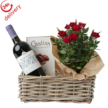 Red Wine and Rose Plant