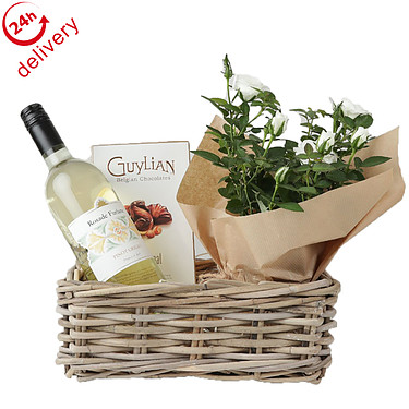 White Wine and Rose Plant