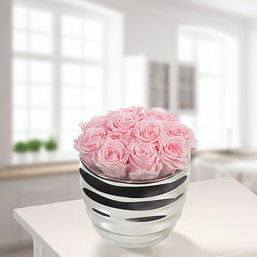 10 pink roses in a silver pot