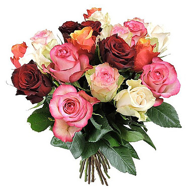 Bunch of mixed roses