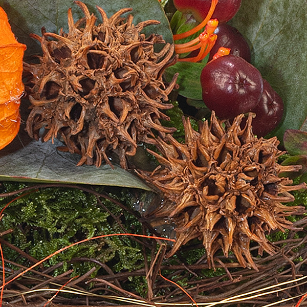 Arrangement Herbstwiese