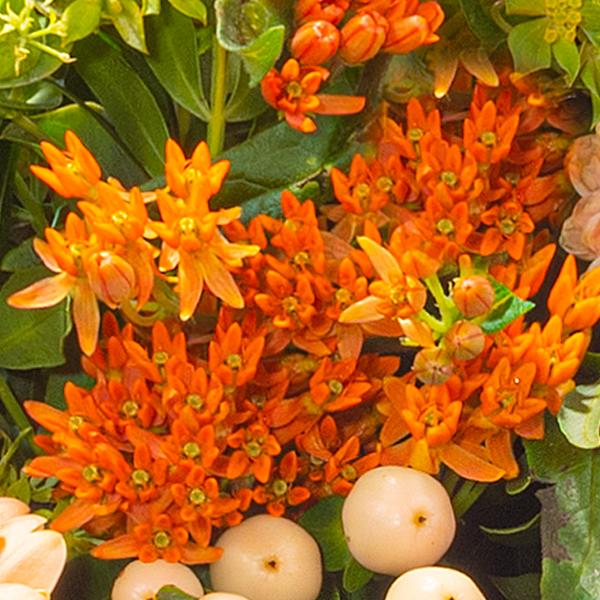 Blumenstrauß Sommerschönheit mit Vase