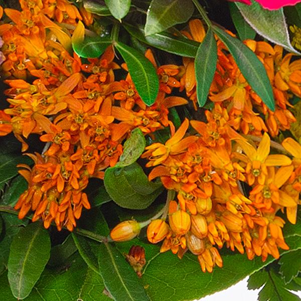 Blumenstrauß Blütenmelodie mit Vase