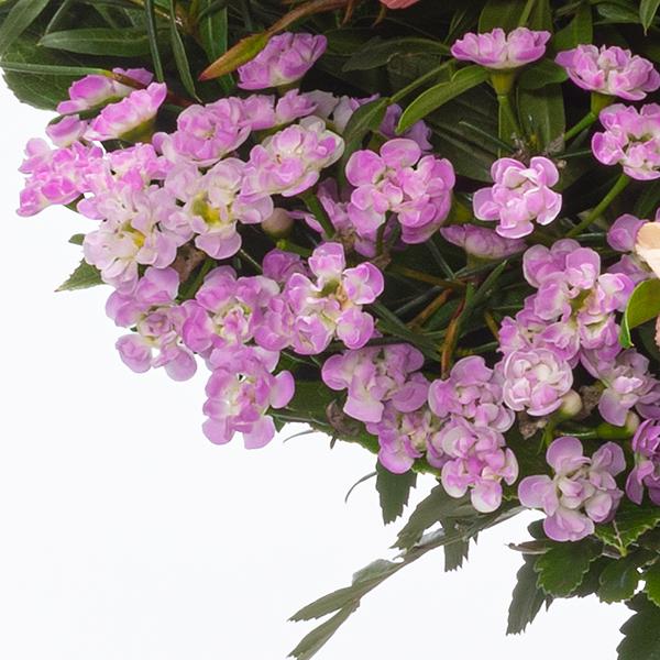 Blumenstrauß Farbenfroh mit Vase & Ferrero Raffaello