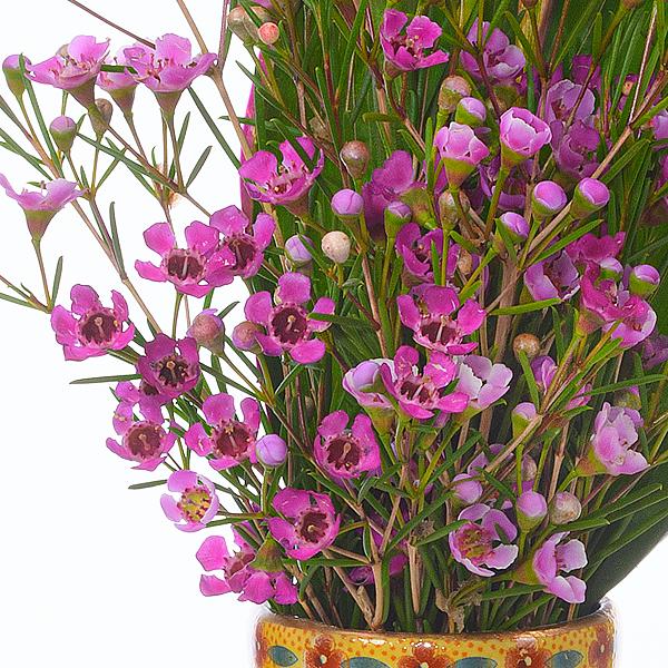 Flower Bouquet Asian Beauty
