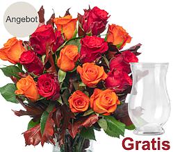 15 herbstliche Rosen