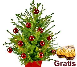 Weihnachtsbaum Holiday